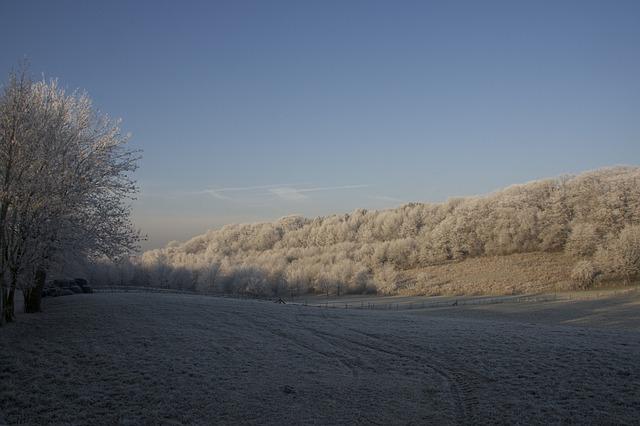 Het Vijlenerbos in Zuid-Limburg